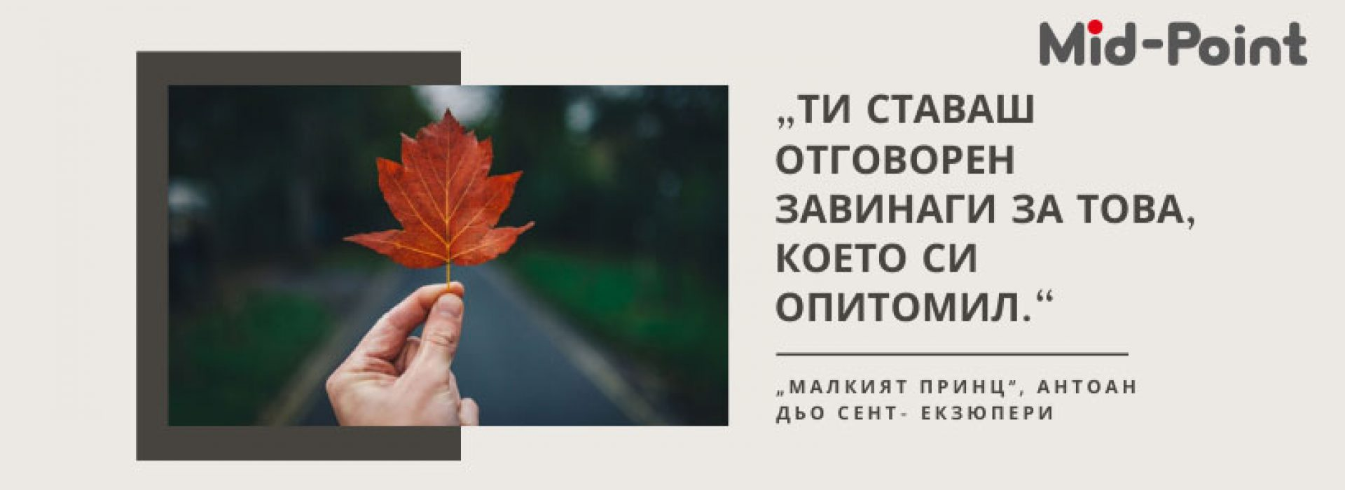 Мид-Пойнт Кариери